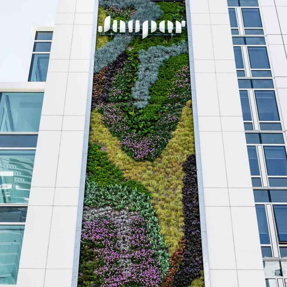 45 Lansing Living Wall by Habitat Horticulture - View 4