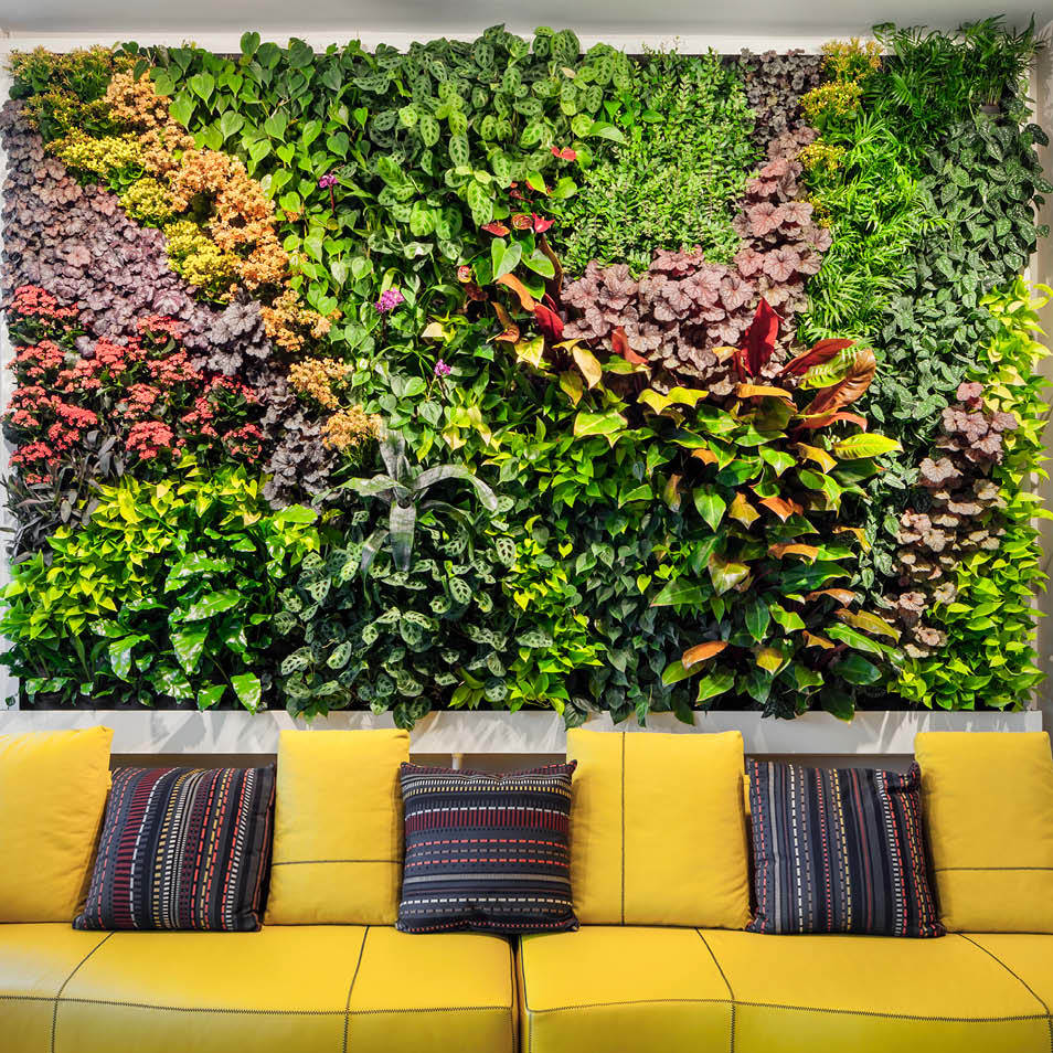 Diller Residence Living Wall by Habitat Horticulture - View 3