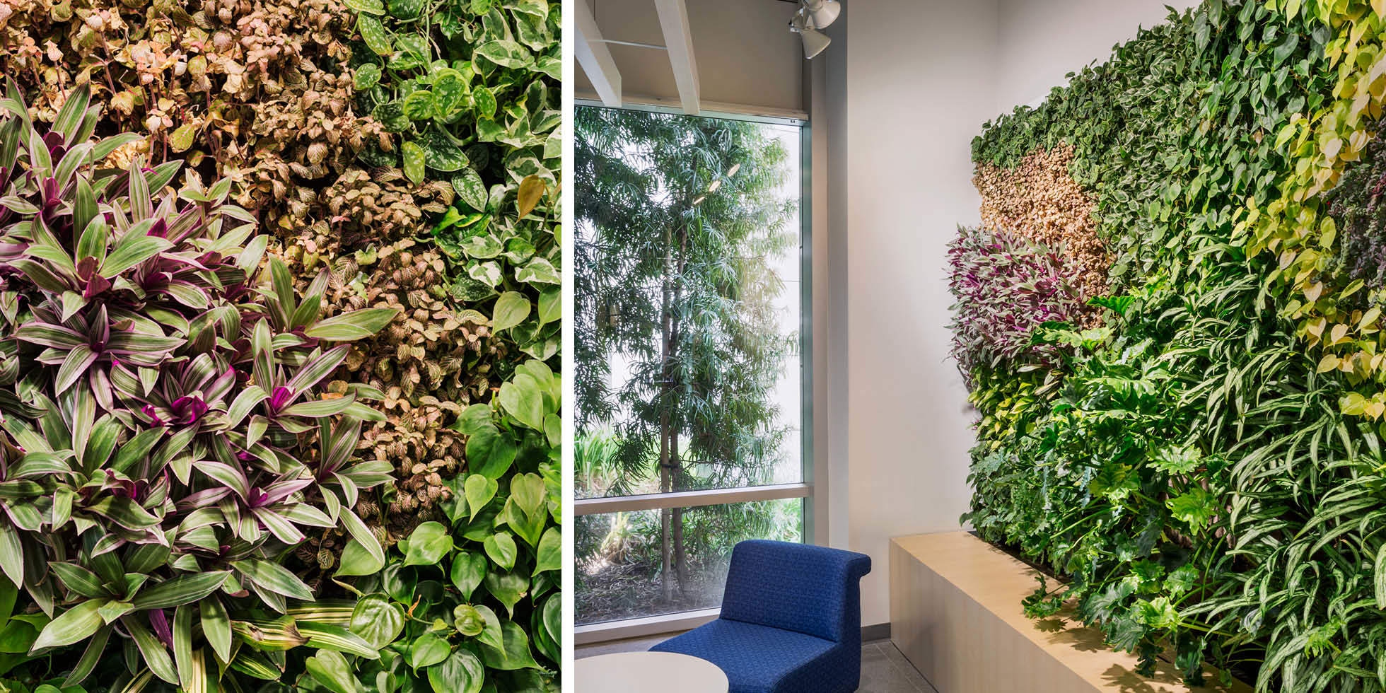 Jabil Living Wall by Habitat Horticulture - View 2