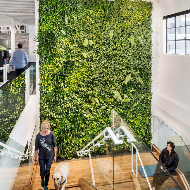 Plum organics living wall2