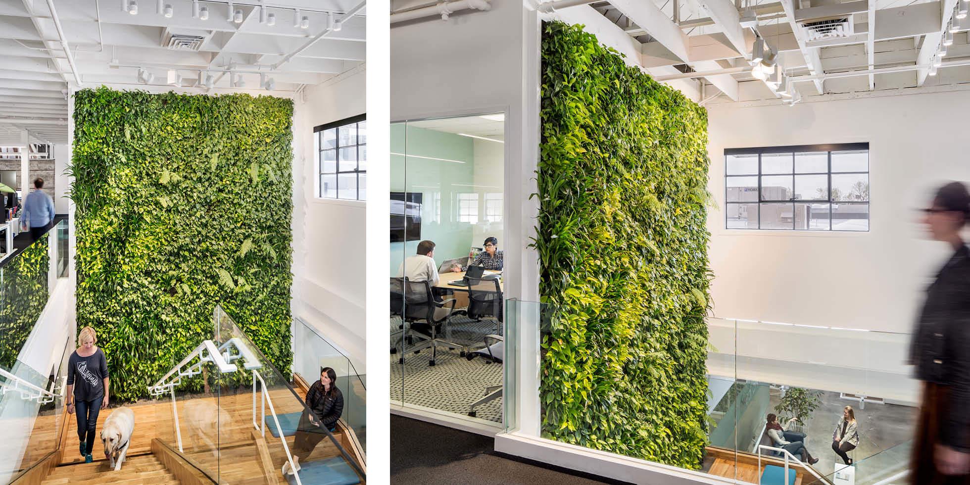 Plum Organics Living Wall by Habitat Horticulture - View 1