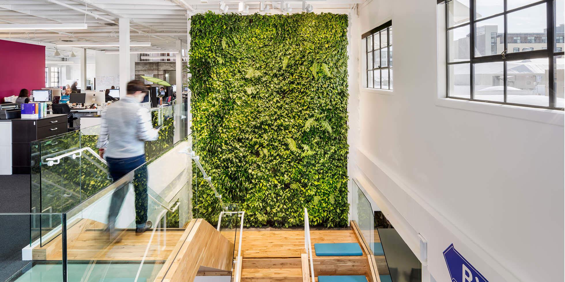 Plum Organics Living Wall by Habitat Horticulture - View 3
