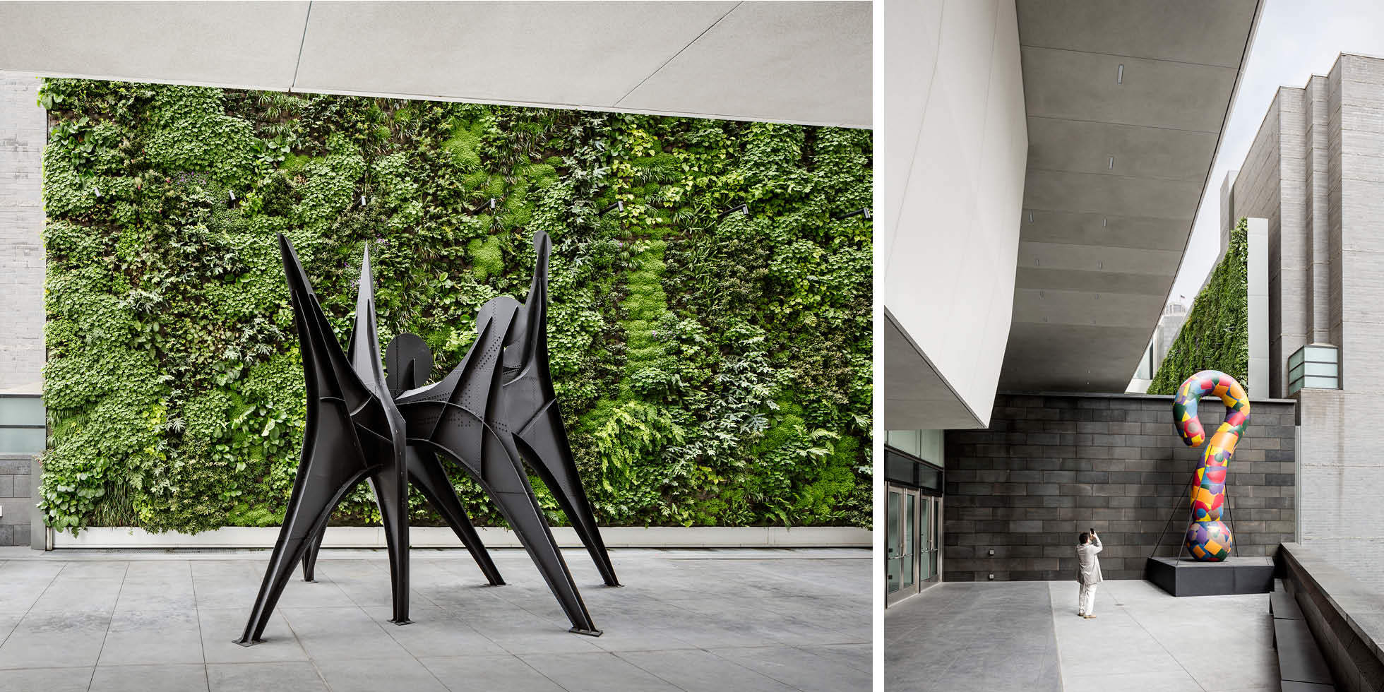 SFMOMA Living Wall by Habitat Horticulture - View 7