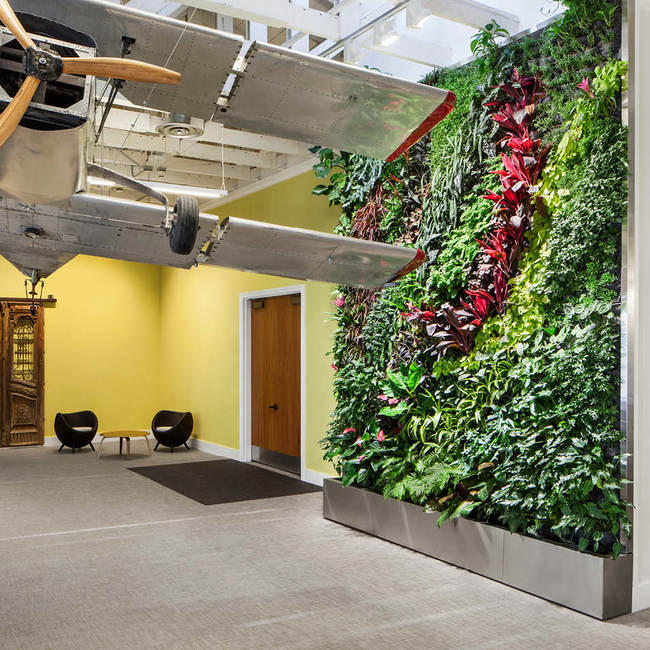 Dailymotion living wall8