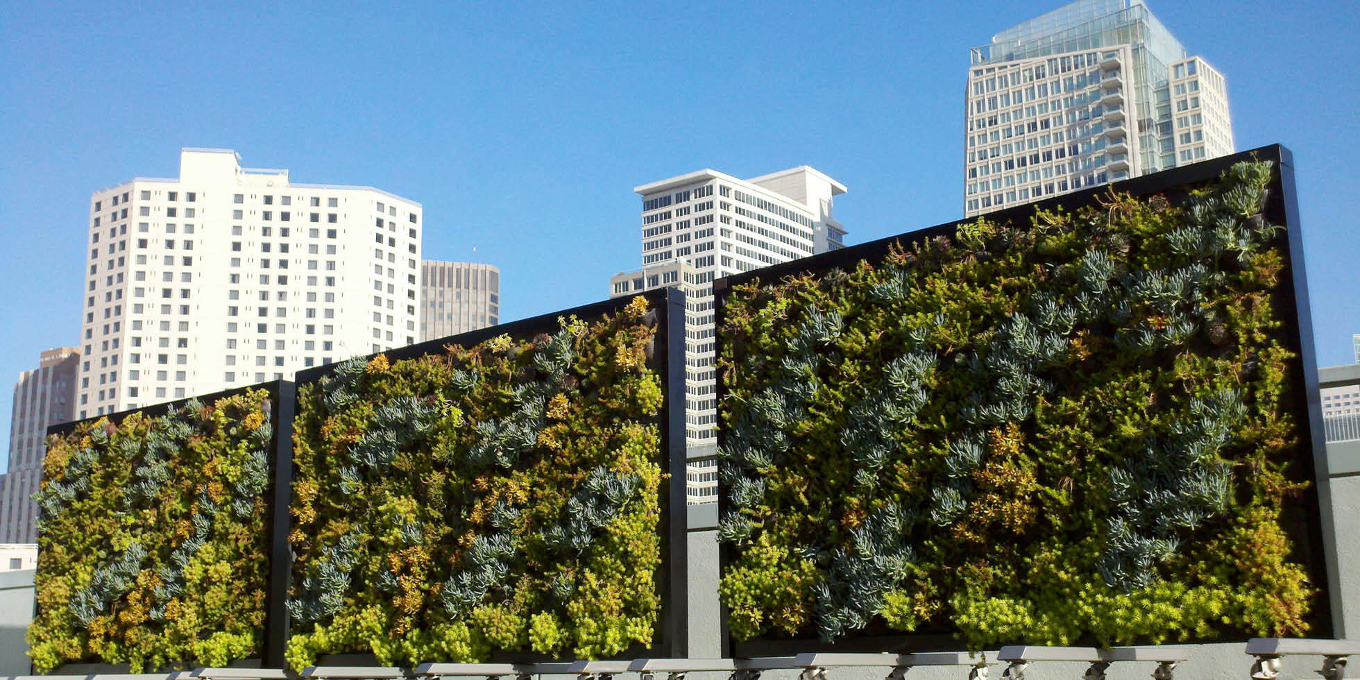 Metreon City View Living Wall by Habitat Horticulture - View 1