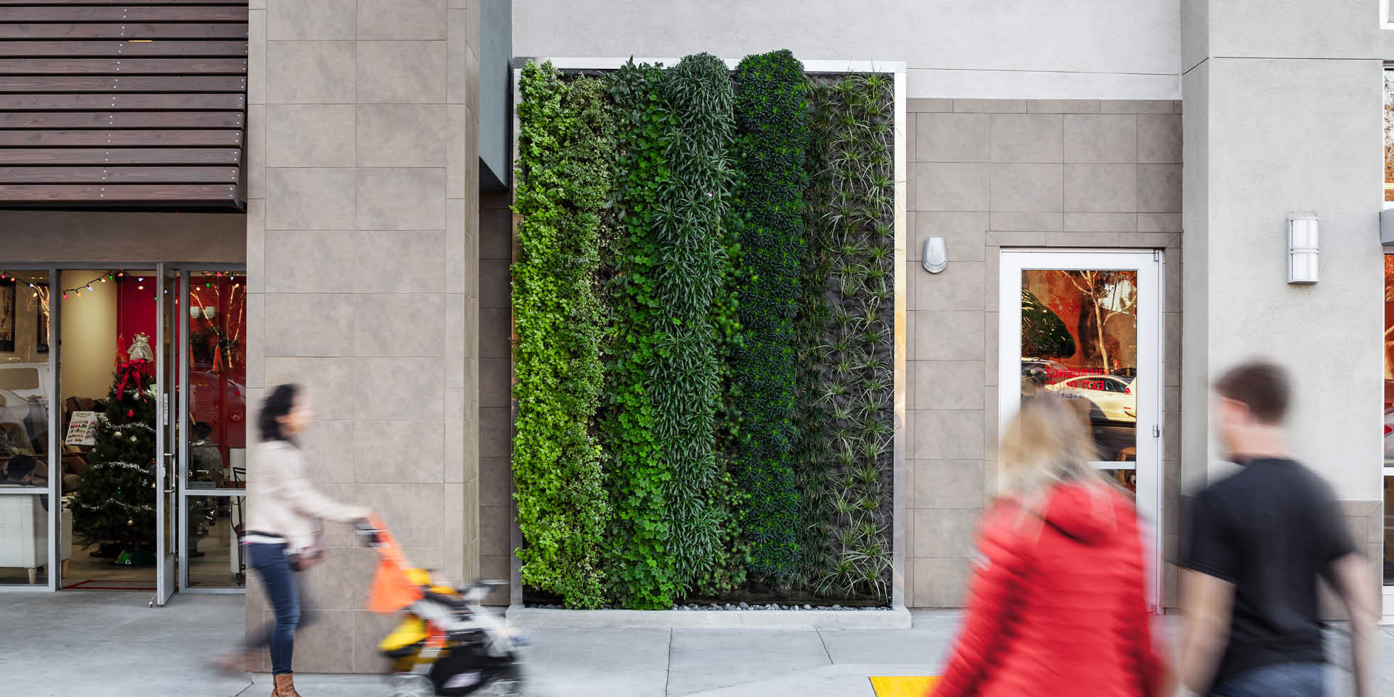 City Sports Club Living Wall by Habitat Horticulture - View 1