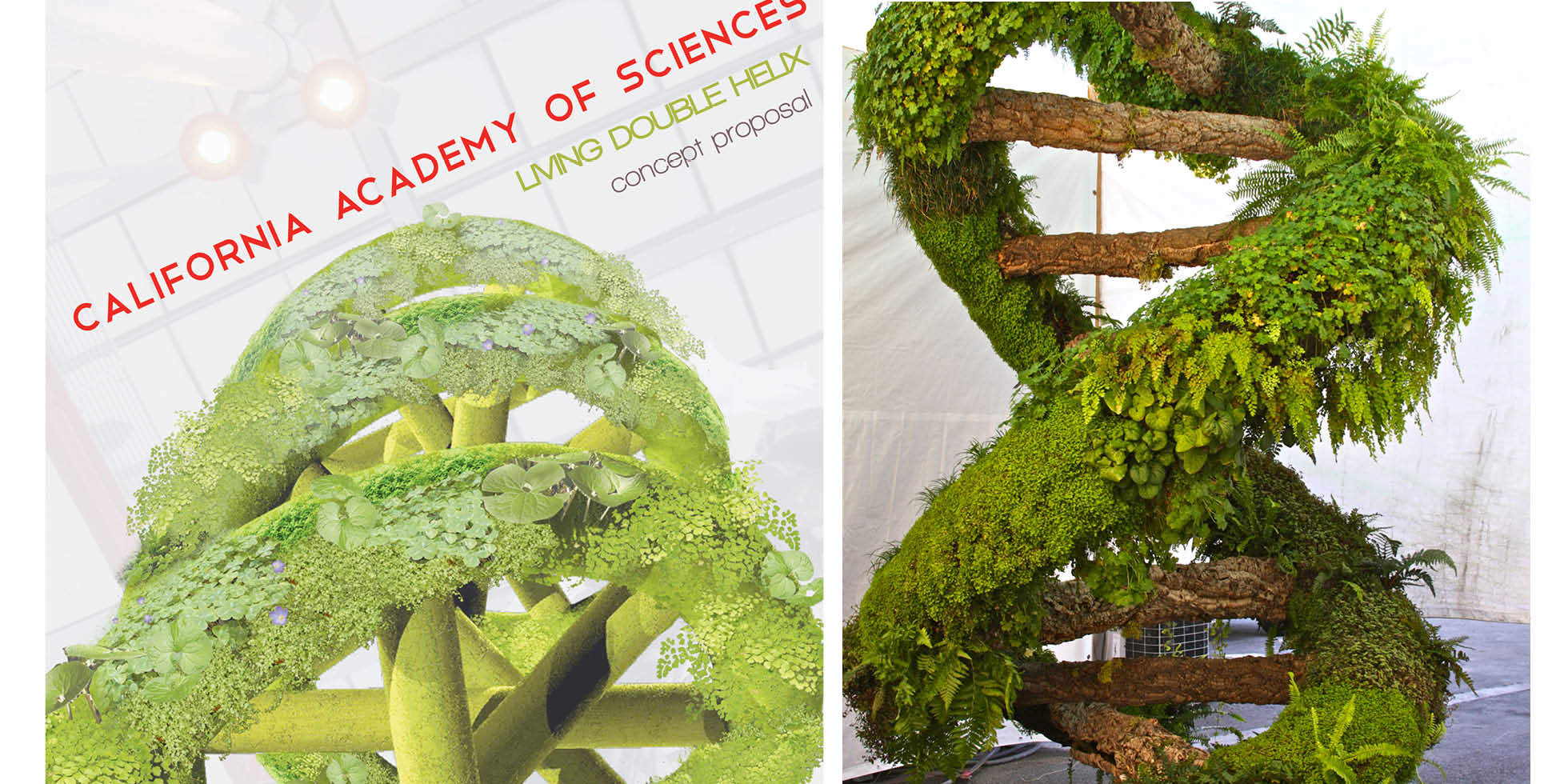 Living Double Helix Living Wall by Habitat Horticulture - View 2