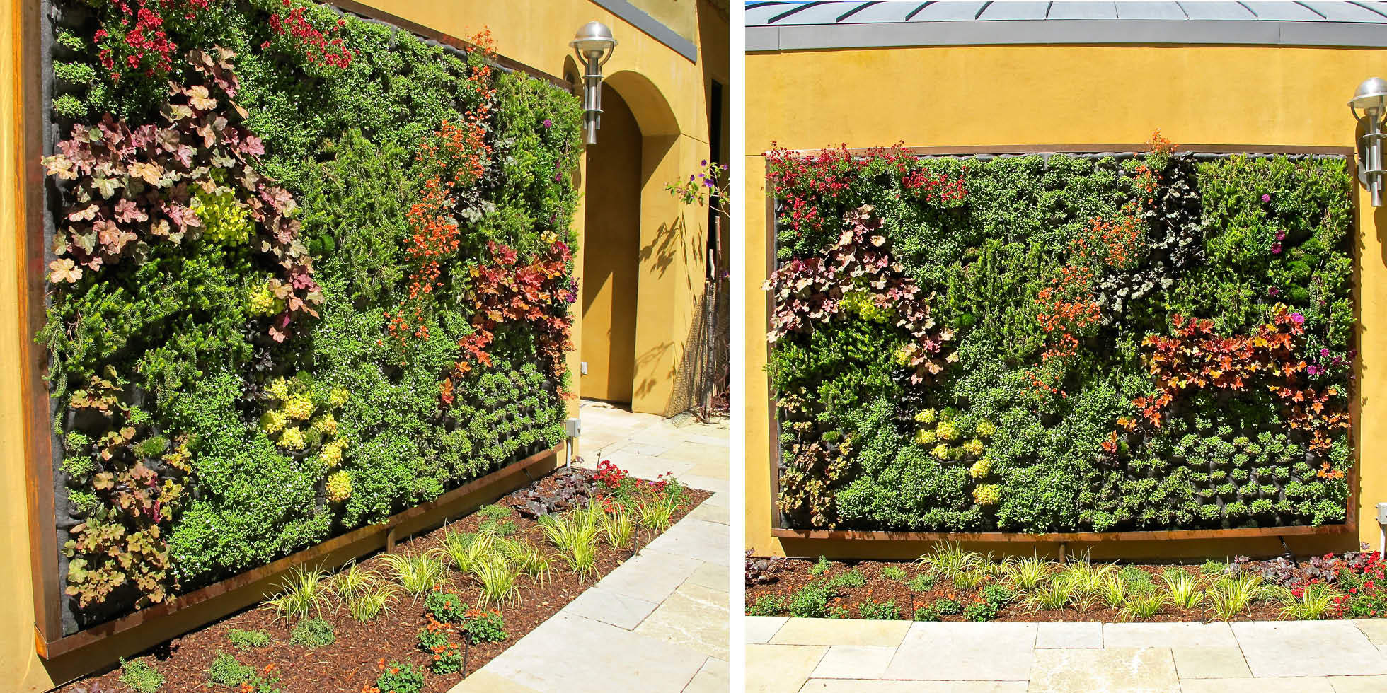 Tiburon Estate Living Wall by Habitat Horticulture - View 3