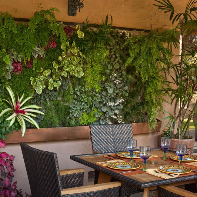 Traeger living wall vertical garden9