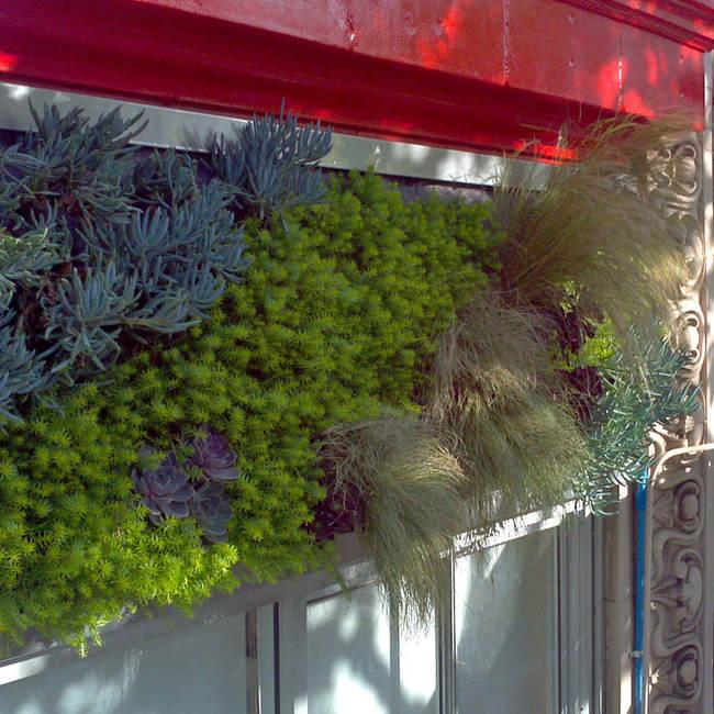 Living wall green wall vertical garden8