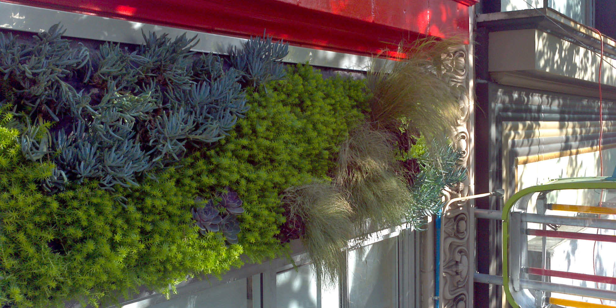 The Luggage Store Living Wall by Habitat Horticulture - View 1