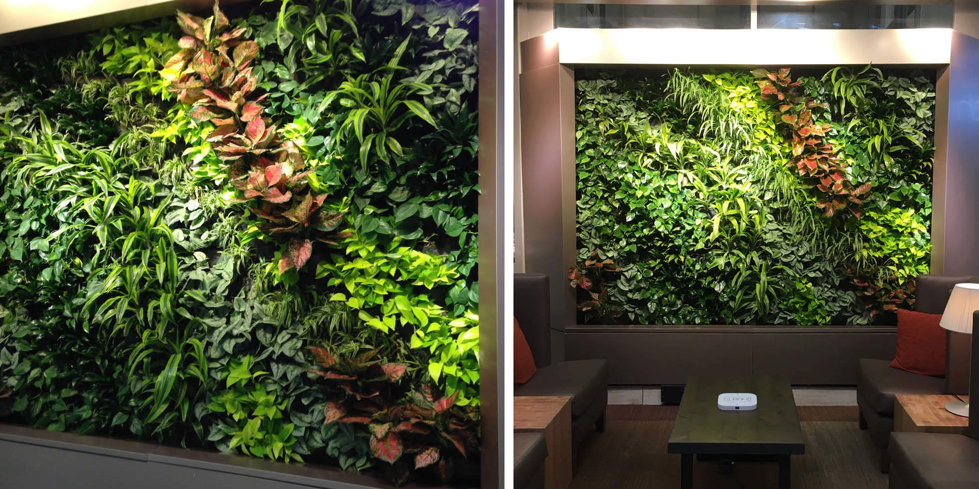 Arrowhead Towne Center Living Wall by Habitat Horticulture - View 1