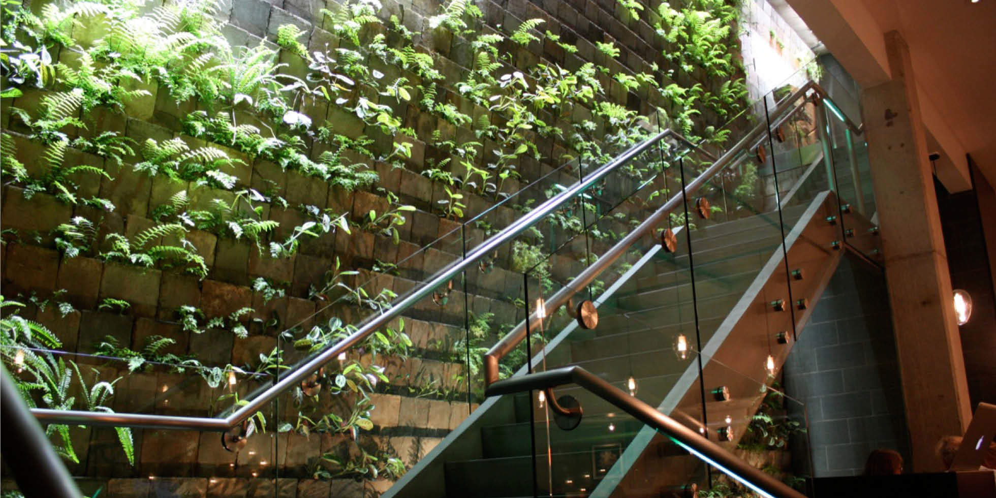 The Moss Room Restaurant Living Wall by Habitat Horticulture - View 1