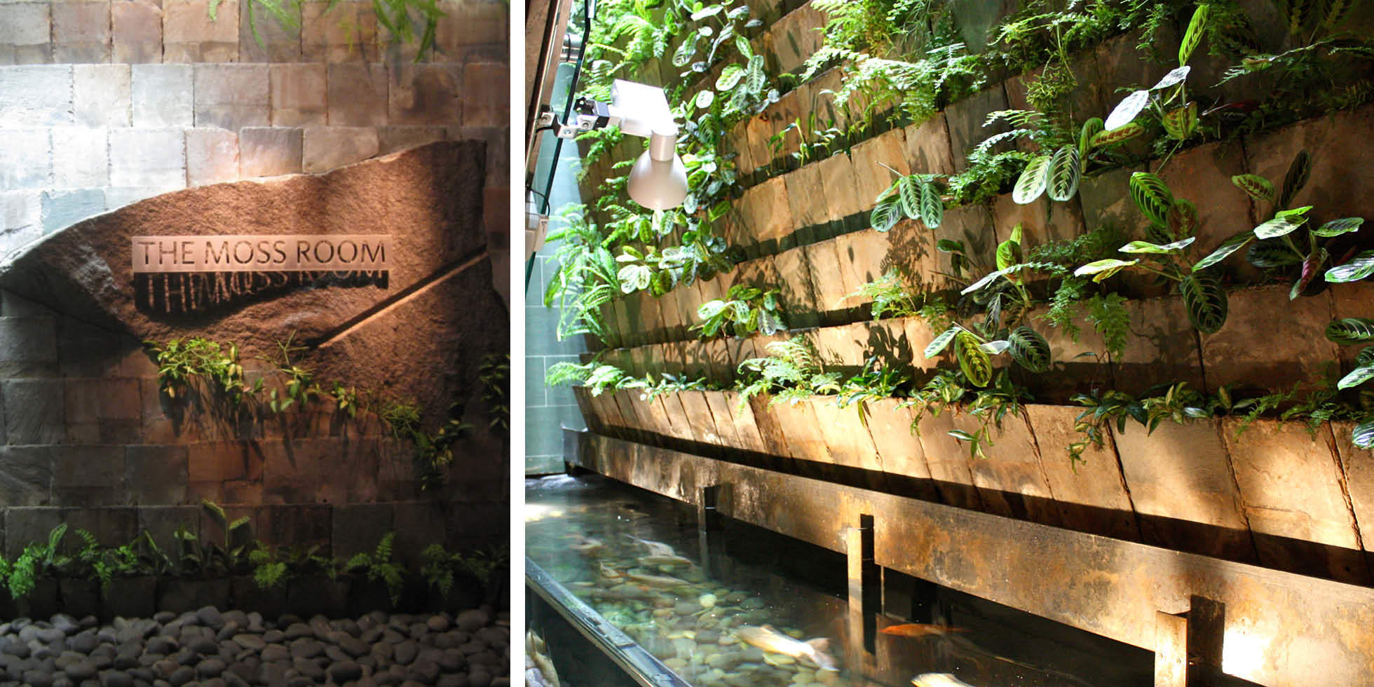 The Moss Room Restaurant Living Wall by Habitat Horticulture - View 2
