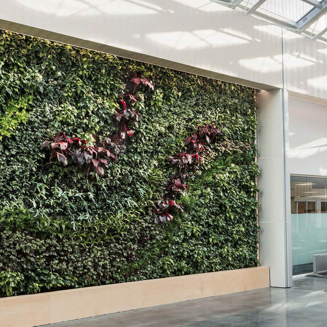 Bd living wall green wall9