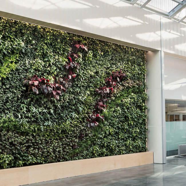 Bd living wall green wall9