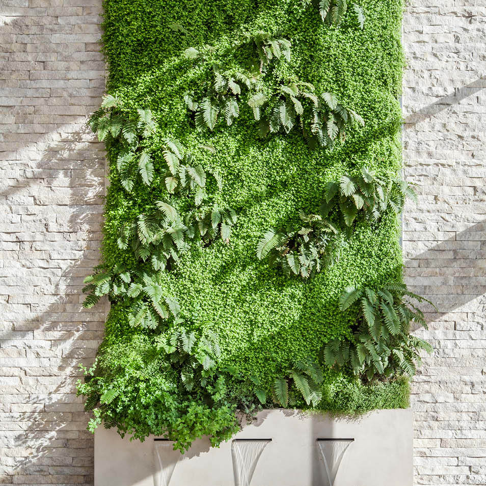 Liddicoat Residence Living Wall by Habitat Horticulture - View 2