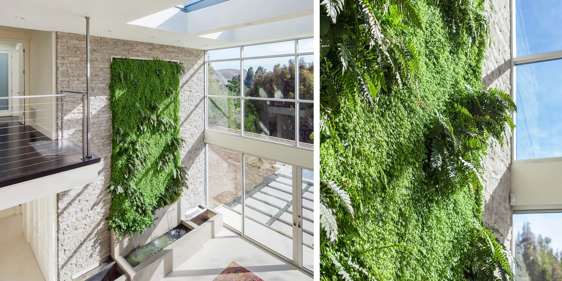 Liddicoat Residence Living Wall by Habitat Horticulture - View 3