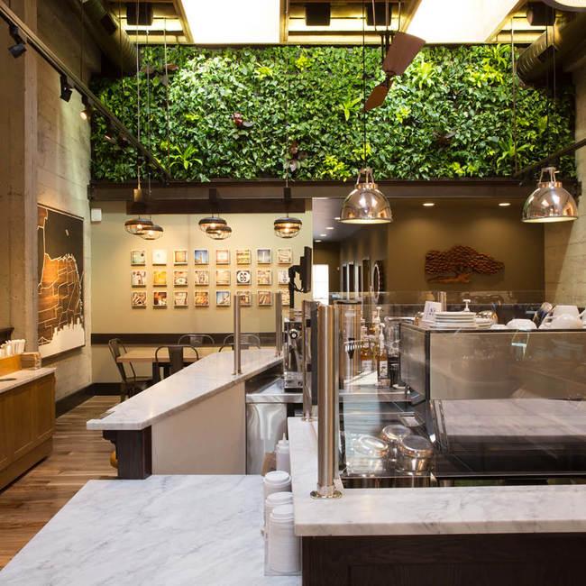 Peet's coffee living wall green wall vertical garden9