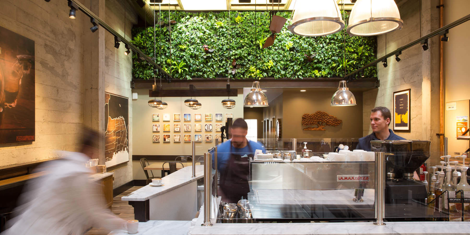 Peet's Coffee & Tea Living Wall by Habitat Horticulture - View 3