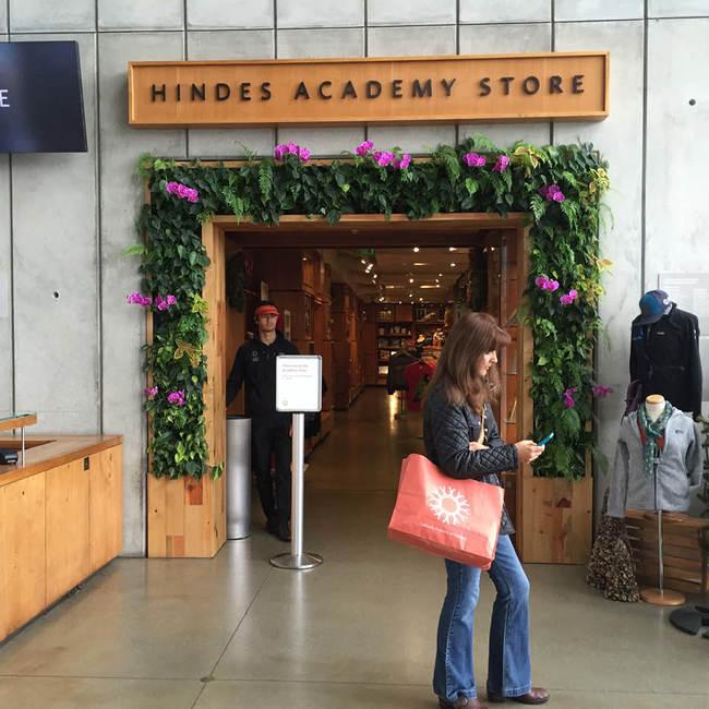 California academy of sciences living wall  green wall   vertical garden10
