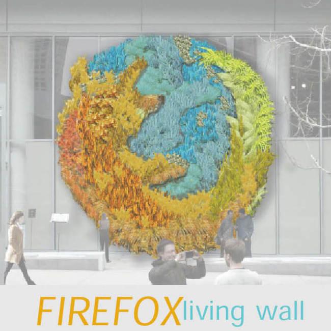 California academy of sciences living wall  green wall   vertical garden8
