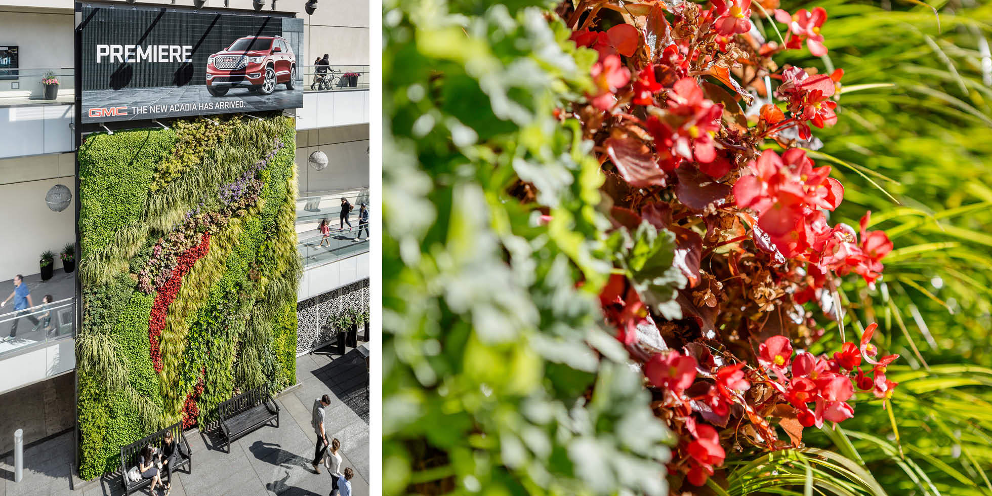 Westfield Century City Living Wall by Habitat Horticulture - View 4