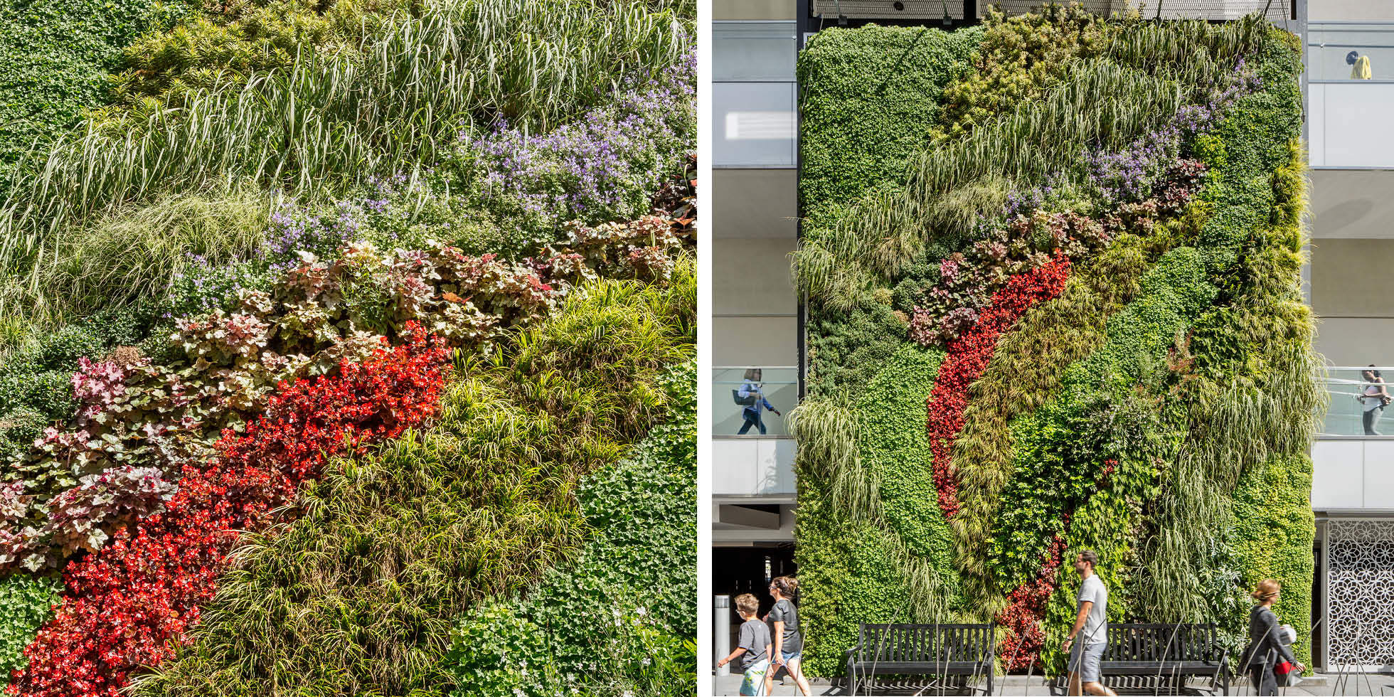 Westfield Century City Living Wall by Habitat Horticulture - View 3