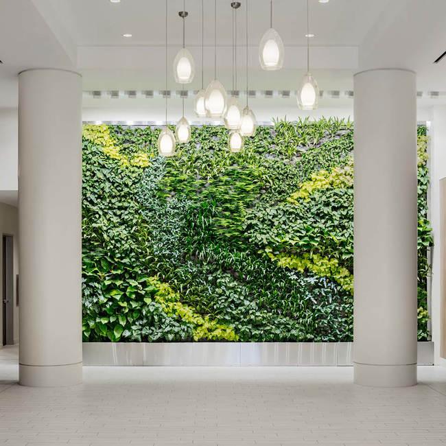 Epa living wall green wall2