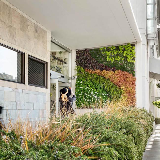 Ucsf living wall green wall2