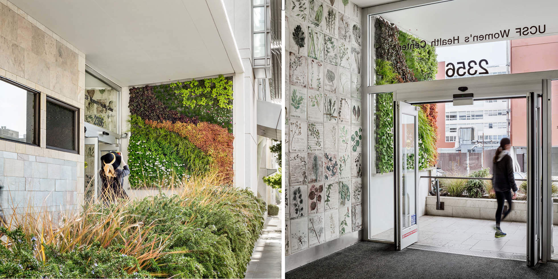 UCSF Women's Health Center Living Wall by Habitat Horticulture - View 1