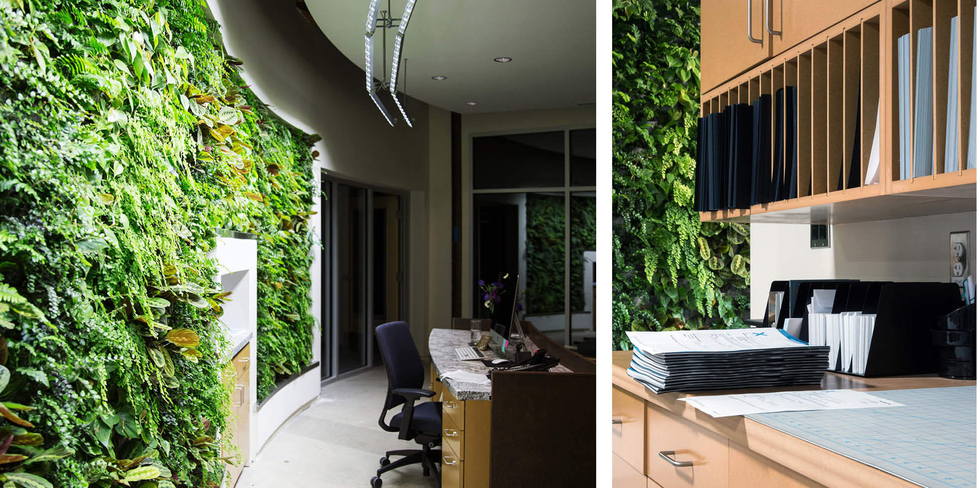 Arch|Nexus Living Wall by Habitat Horticulture - View 2