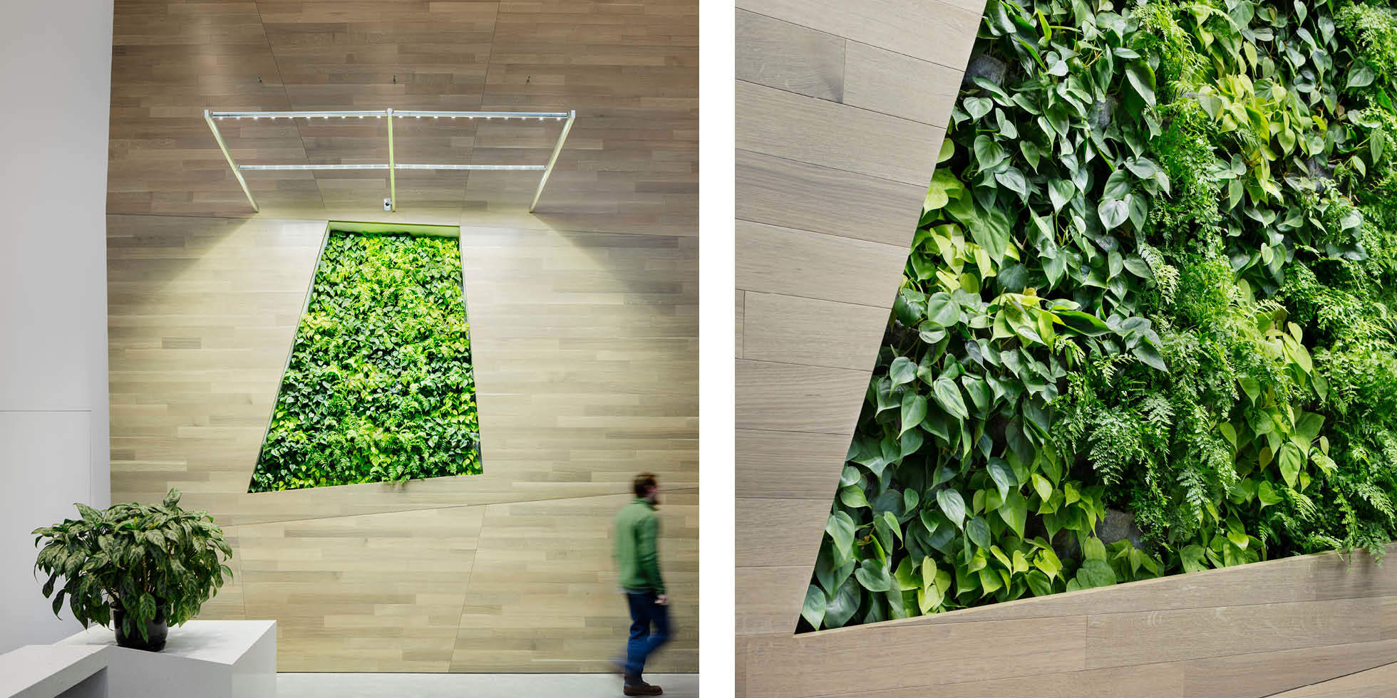 Cisco  Living Wall by Habitat Horticulture - View 1