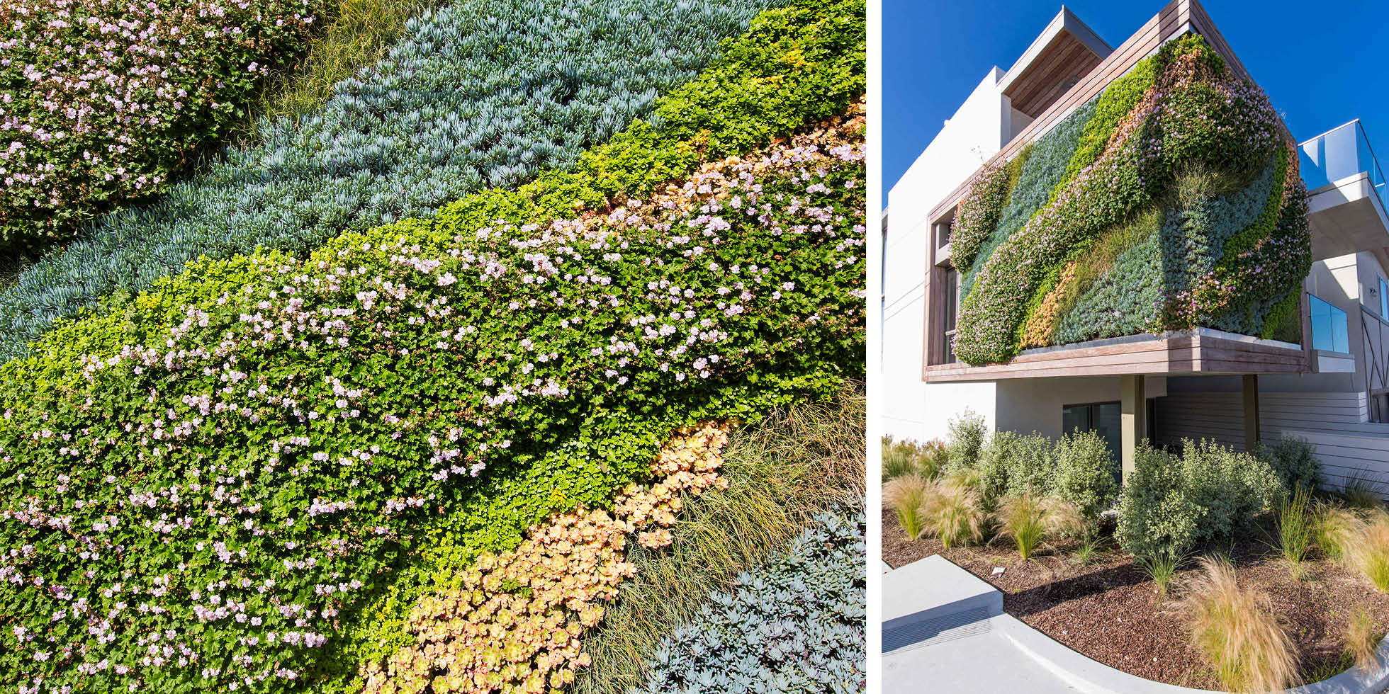 1111 Highview Living Wall by Habitat Horticulture - View 4