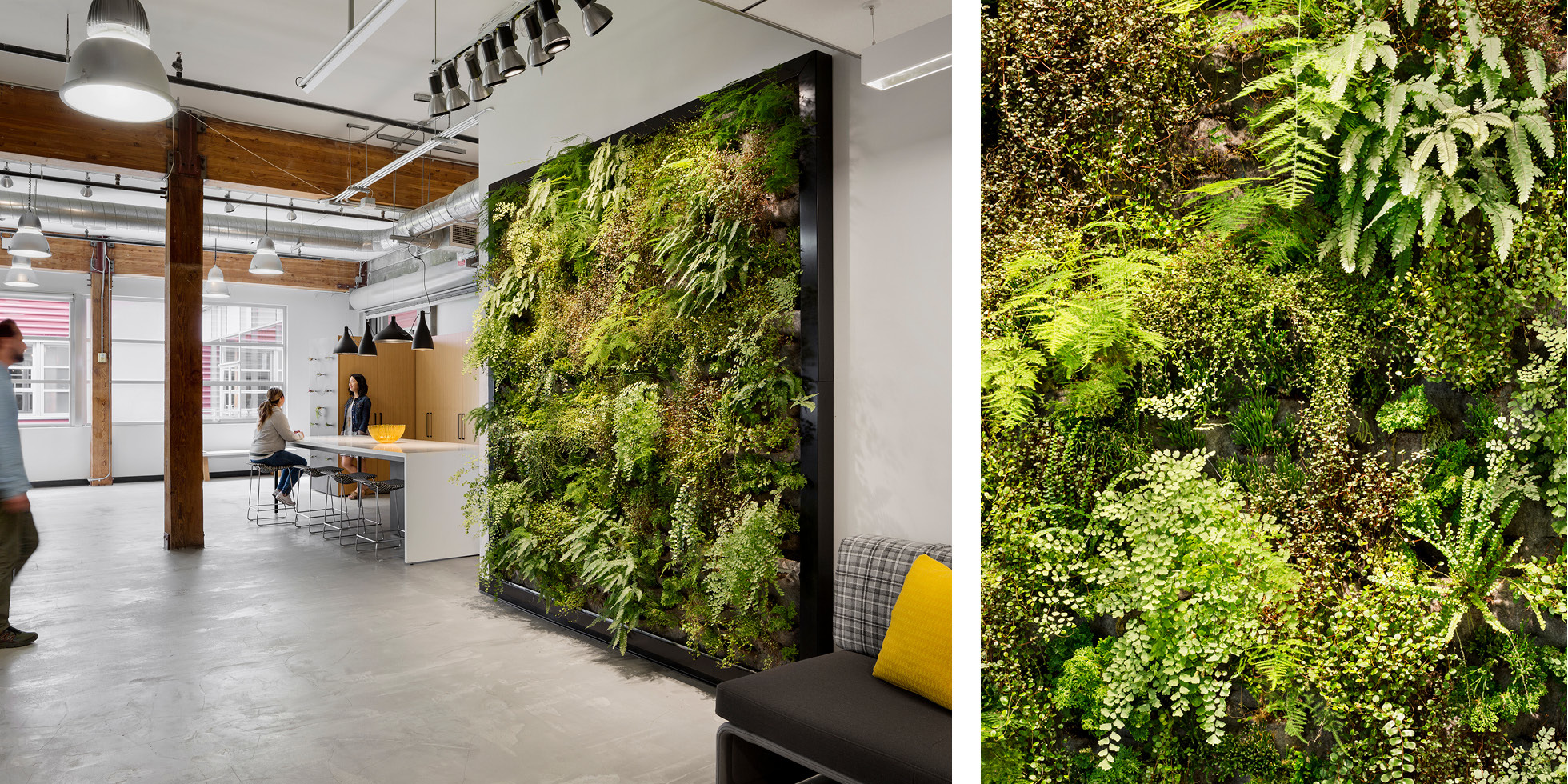One Workplace Living Wall by Habitat Horticulture - View 2