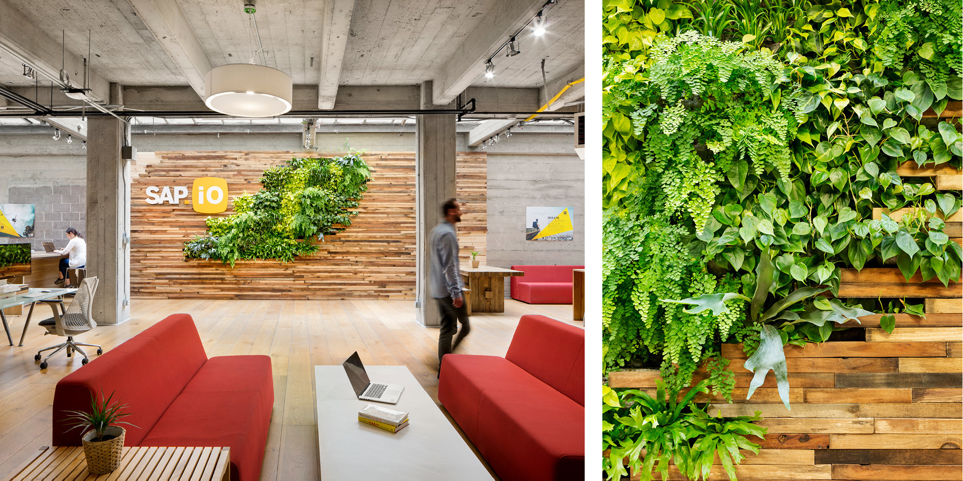 SAP.iO Living Wall by Habitat Horticulture - View 2