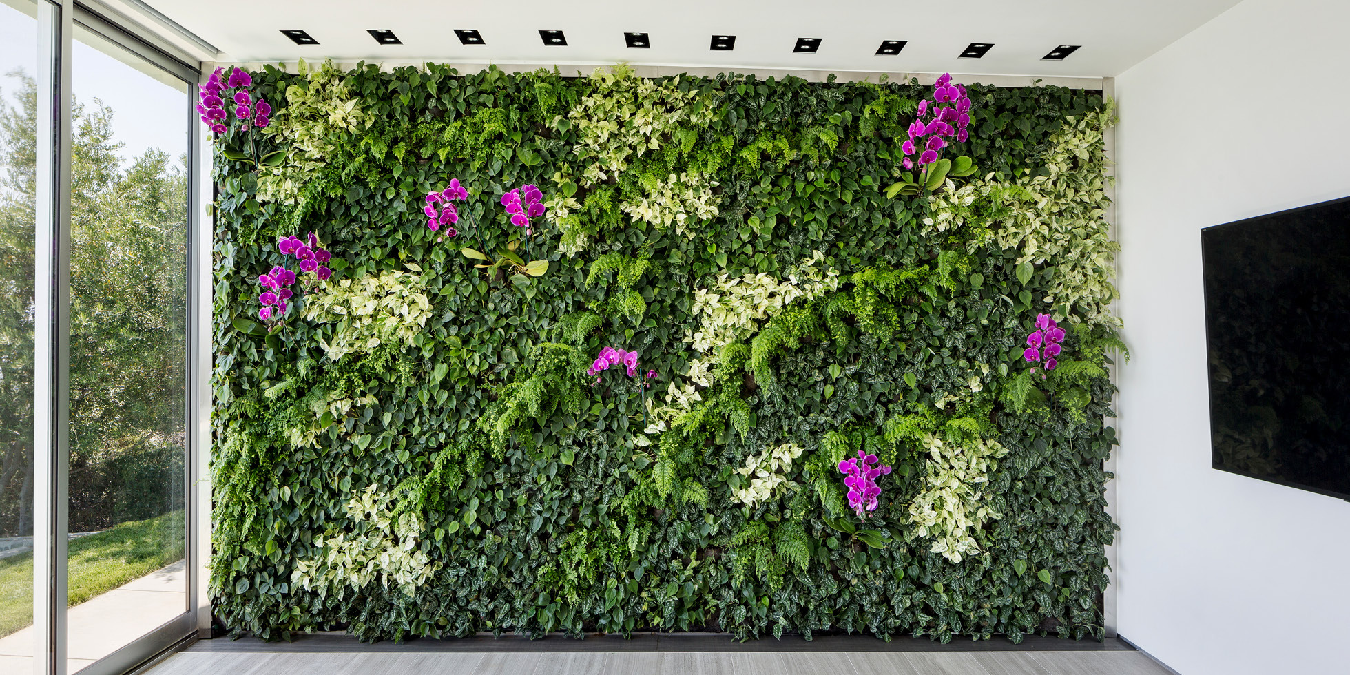 Skyline Residence Living Wall by Habitat Horticulture - View 3