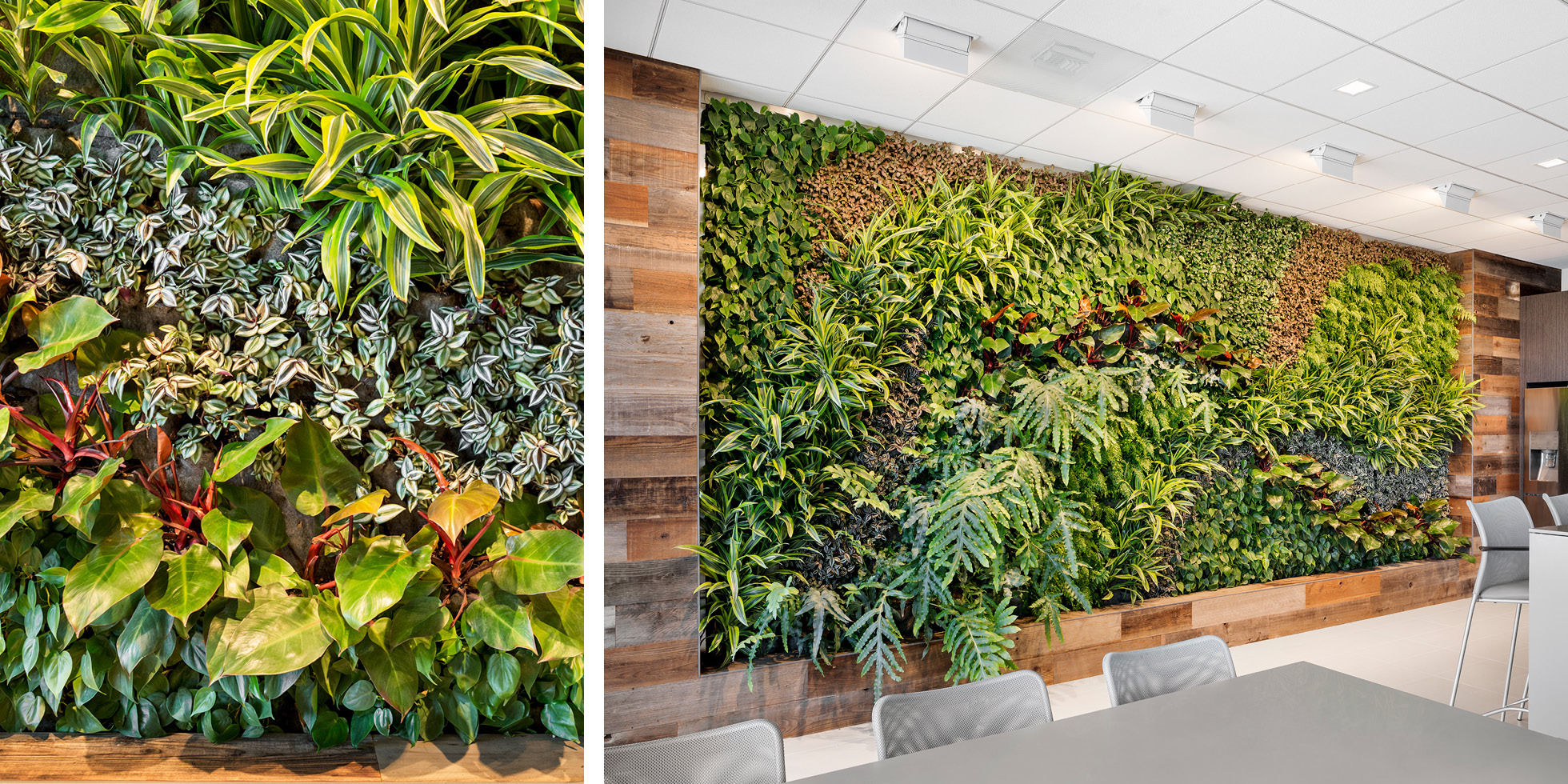 Crown Castle  Living Wall by Habitat Horticulture - View 3
