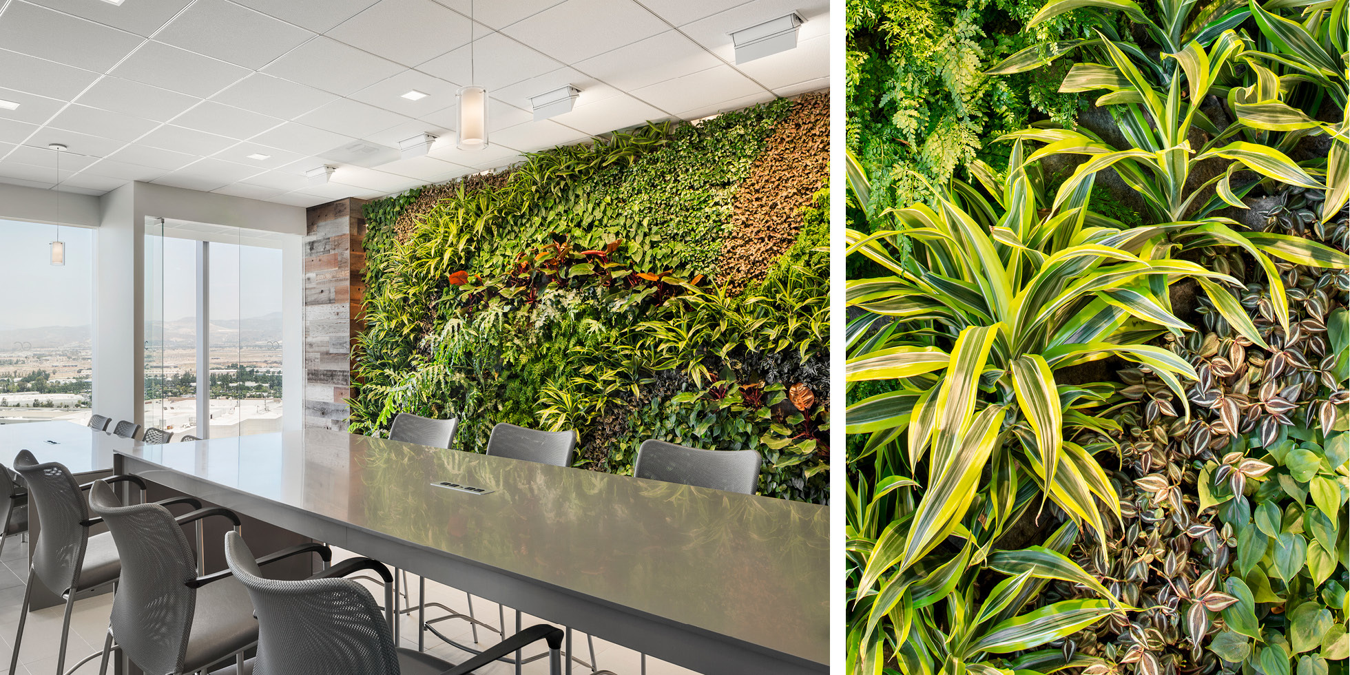 Crown Castle  Living Wall by Habitat Horticulture - View 5