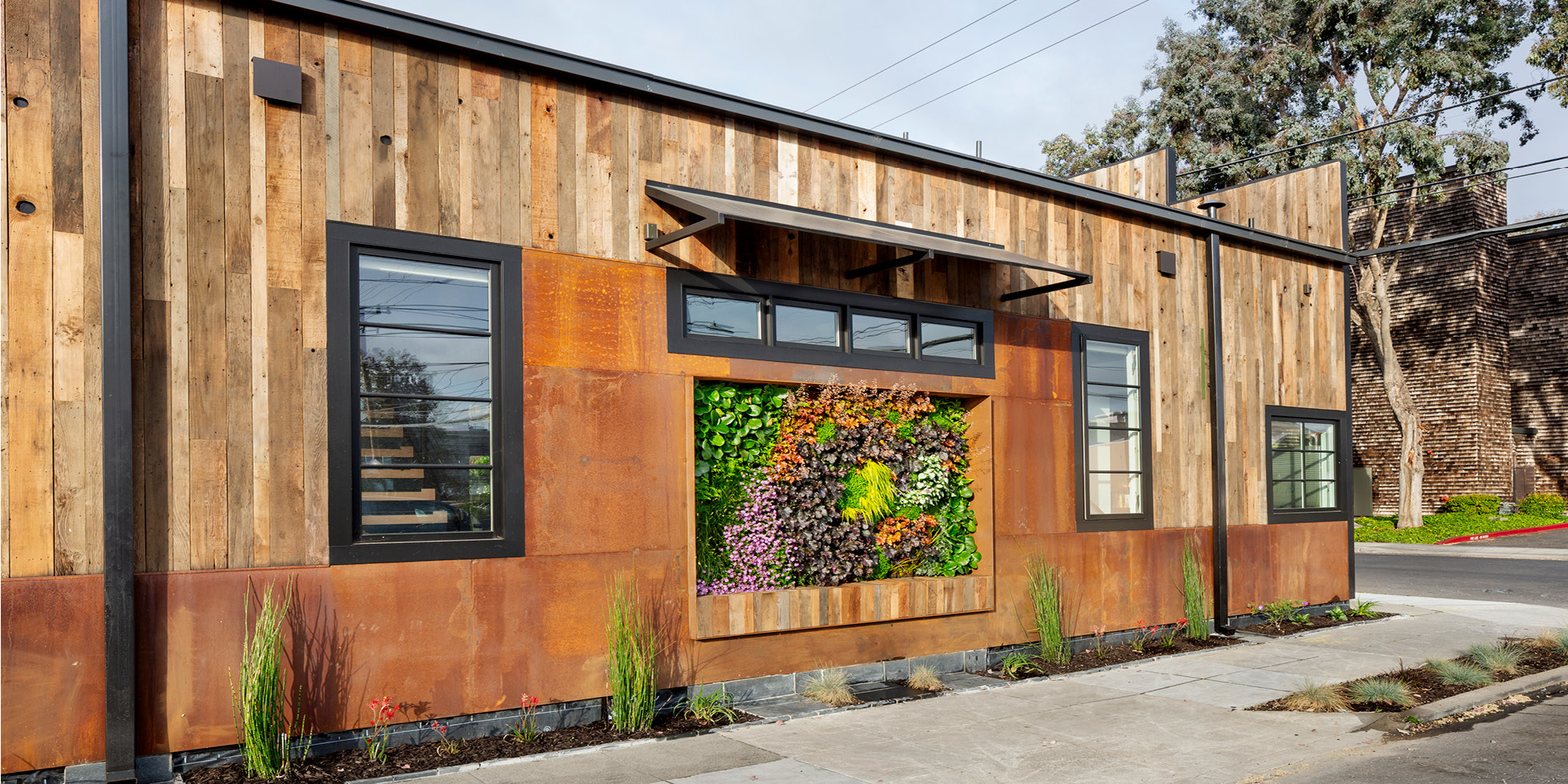 Redwood City Residence Living Wall by Habitat Horticulture - View 2