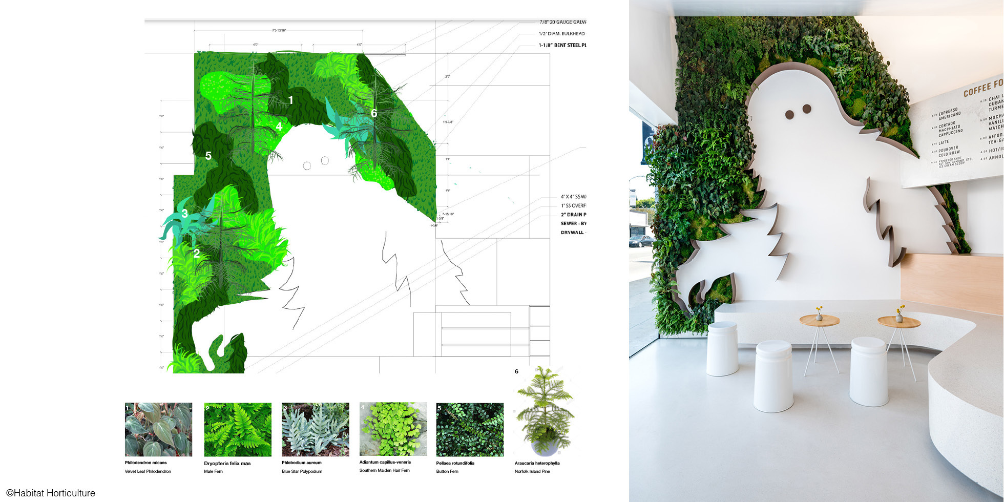 Coffee For Sasquatch Living Wall by Habitat Horticulture - View 4