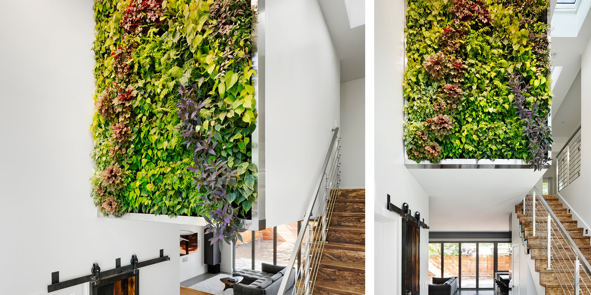 Mountain View Residence Living Wall by Habitat Horticulture - View 1