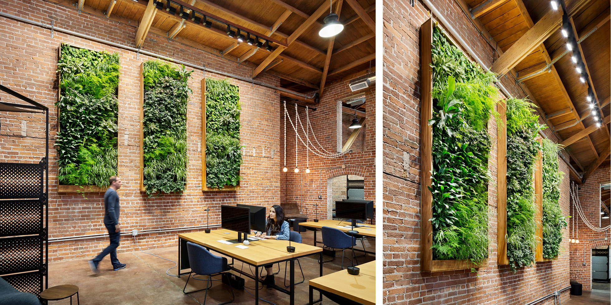 Combine Studios Living Wall by Habitat Horticulture - View 5