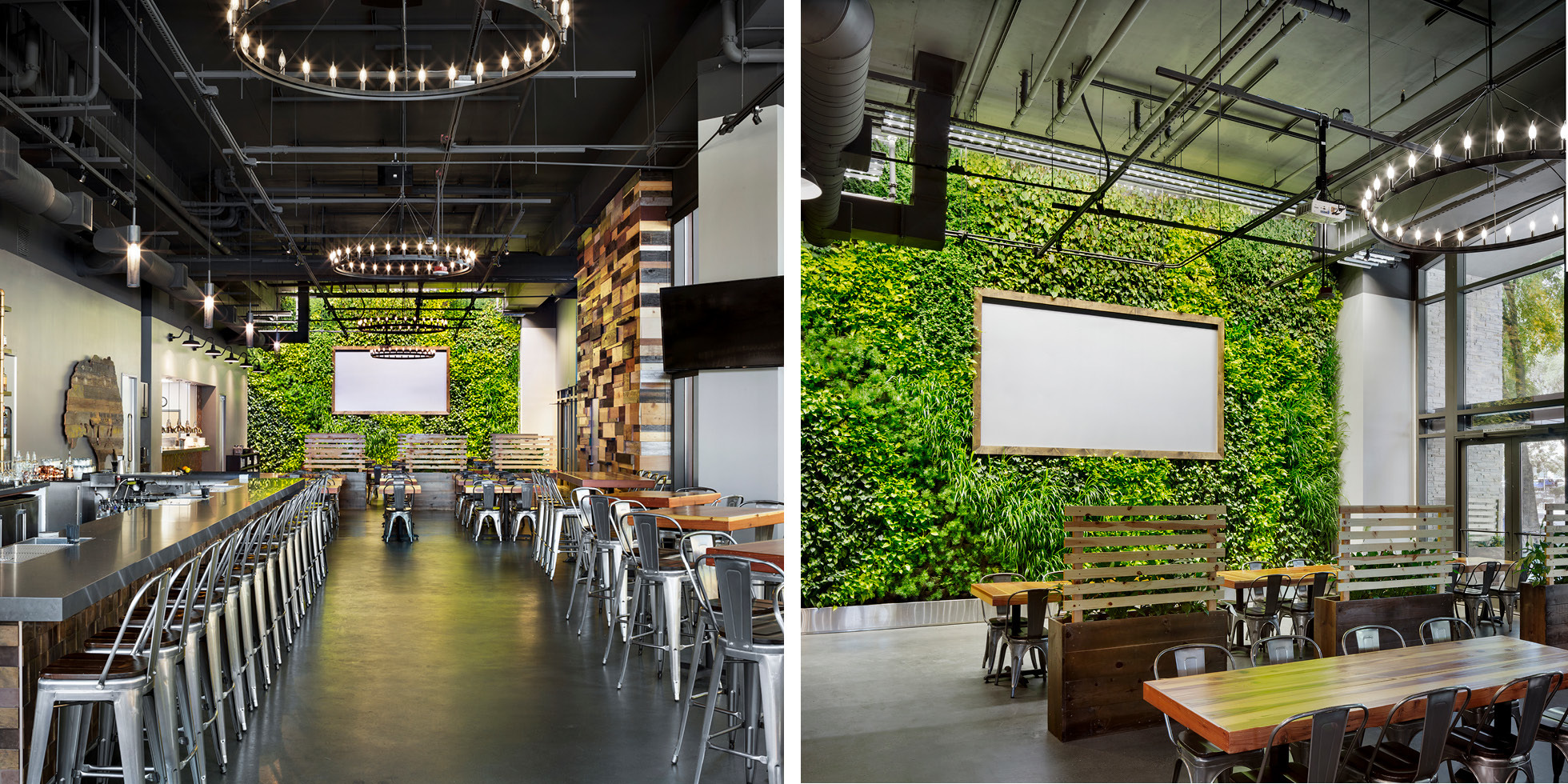 Steins Beer Garden Living Wall by Habitat Horticulture - View 2