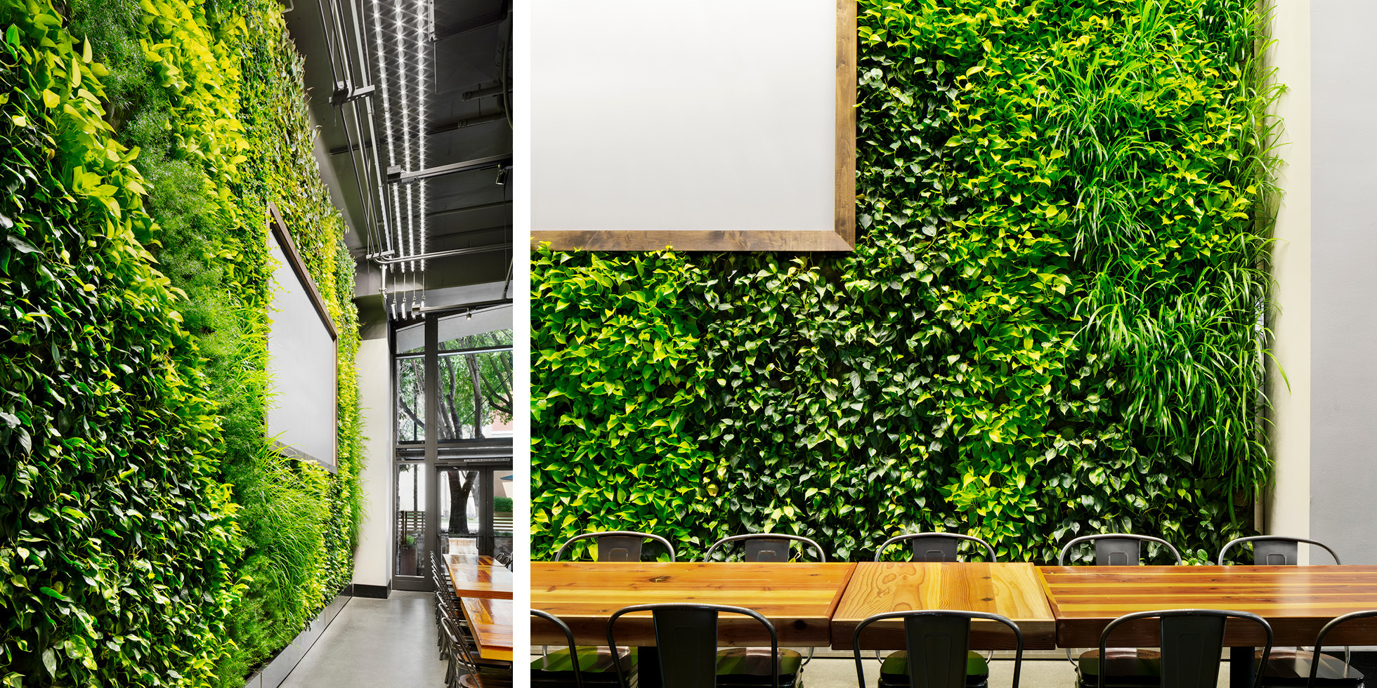 Steins Beer Garden Living Wall by Habitat Horticulture - View 5