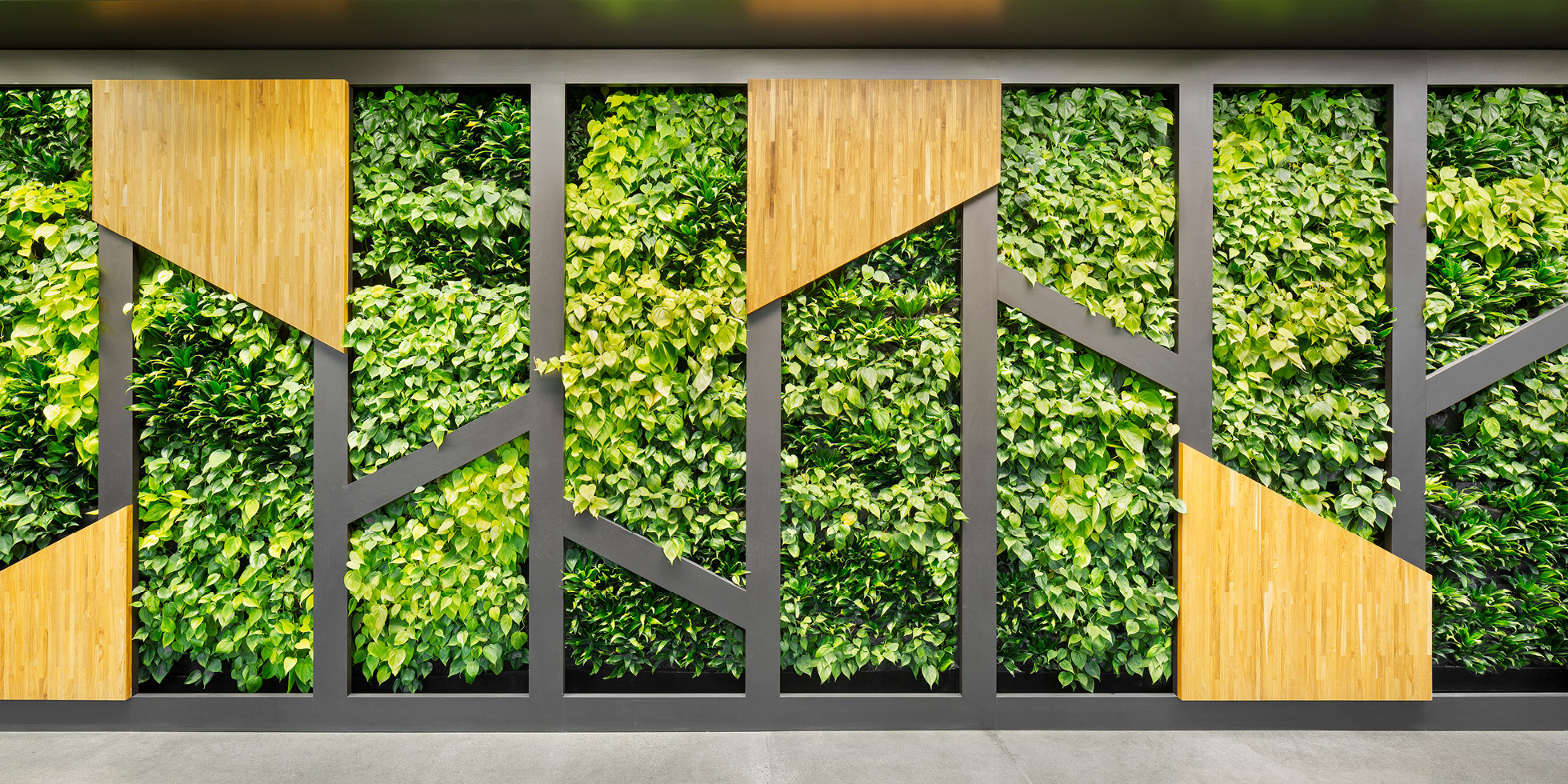 Symantec Living Wall by Habitat Horticulture - View 1