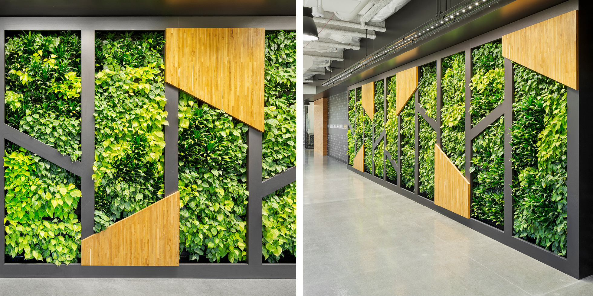 Symantec Living Wall by Habitat Horticulture - View 4