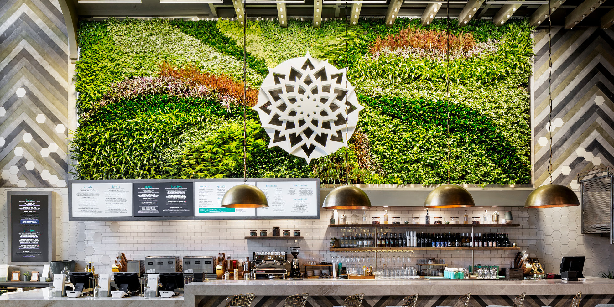 Tocaya Organica Living Wall by Habitat Horticulture - View 4
