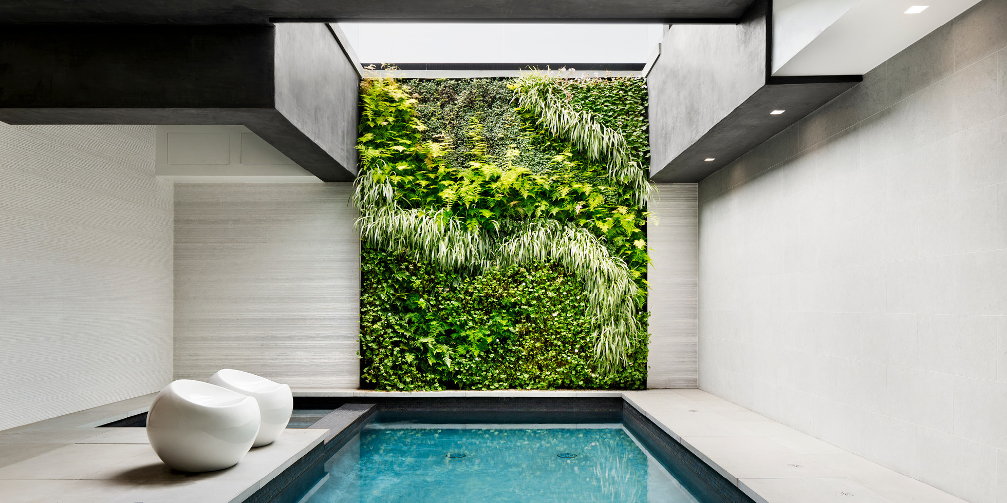 Hollywood Hills Poolside Retreat Living Wall by Habitat Horticulture - View 1