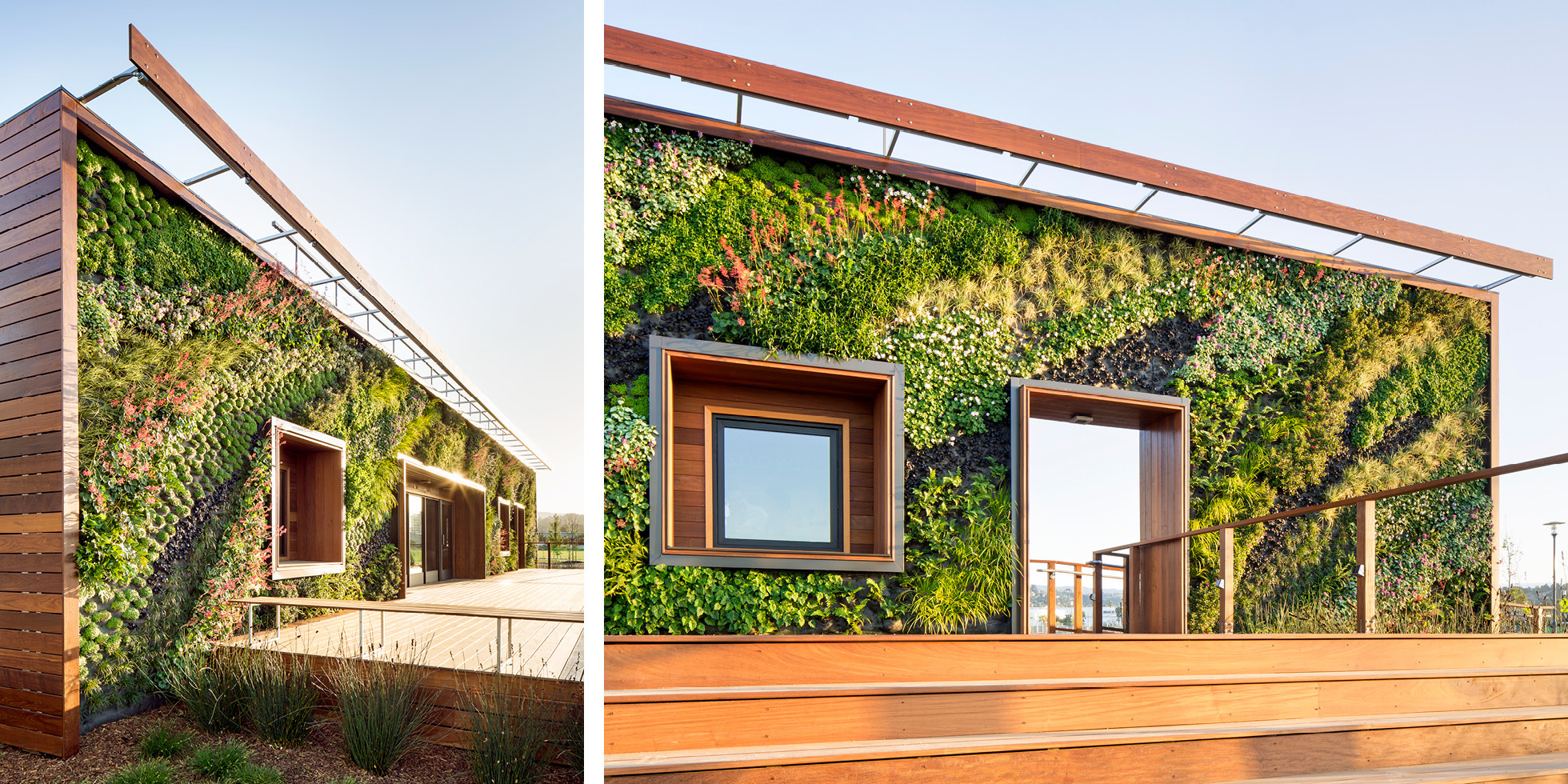 Bay Meadows Welcome Center Living Wall by Habitat Horticulture - View 5